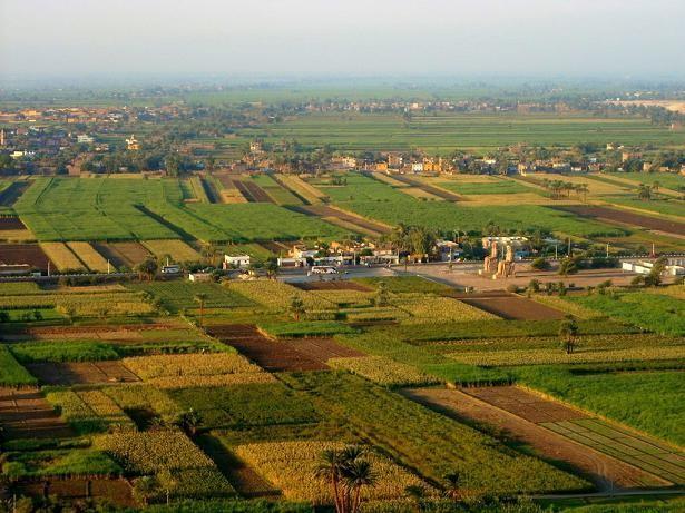 El Nilo vergel agrario