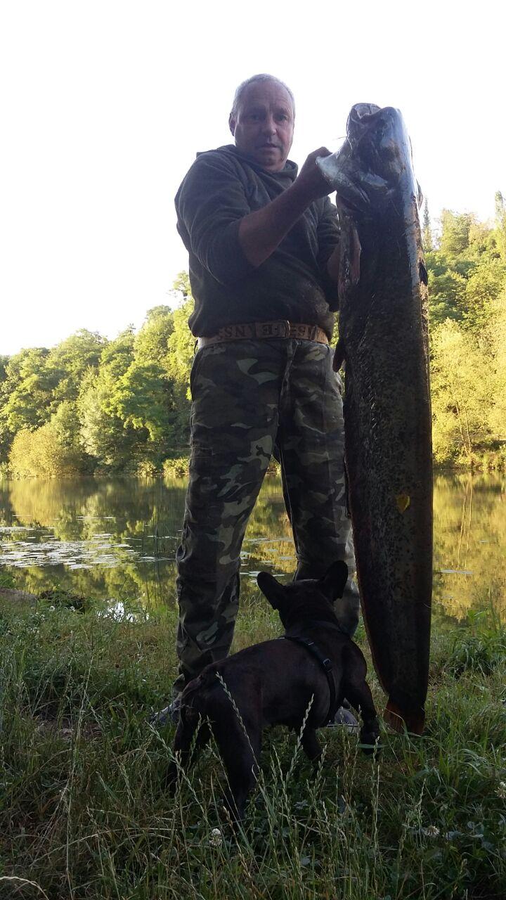 Waller    Länge: 146 cm  Gewicht: 18,5 KG   Köder: Köderfisch
