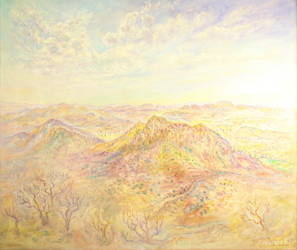 Wüste Rajasthan, 1992