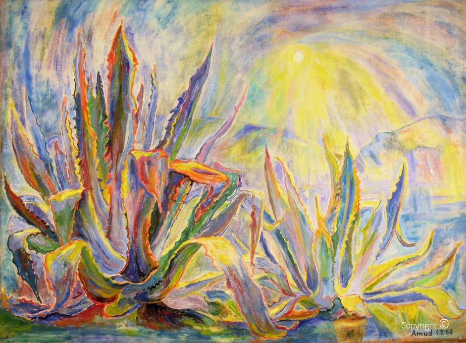 Agaven in der Sonne, 1966
