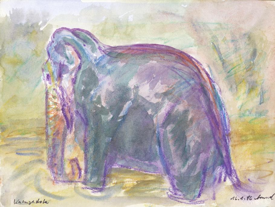 Elefant in Katugastota, 1986
