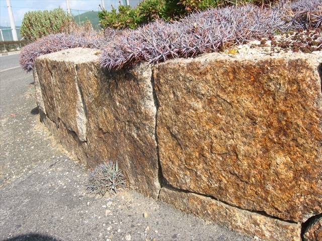 花壇万成自然石