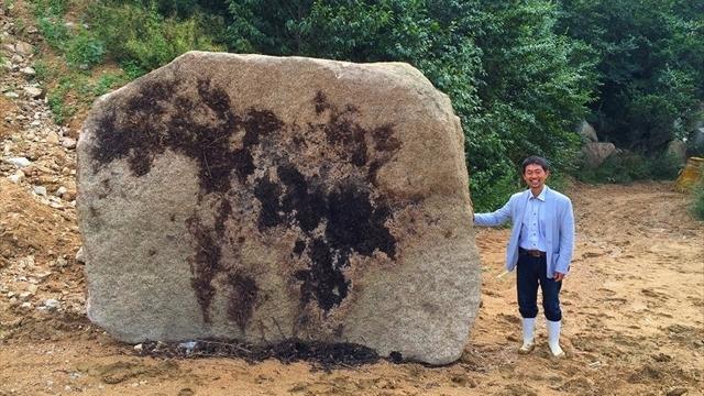 大きな万成自然石