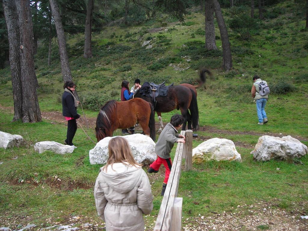 Une randonnée équestre & pédestre dans le Vaucluse