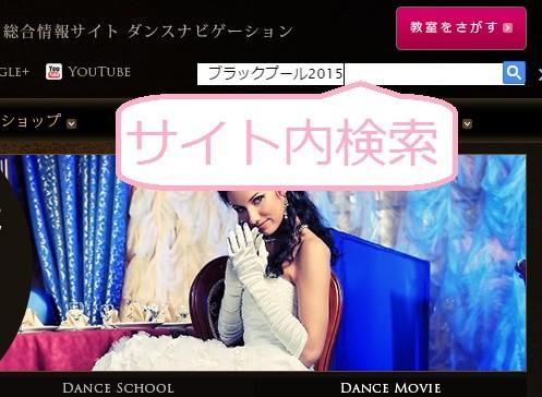 ダンスナビゲーション サイト内検索 プラグイン