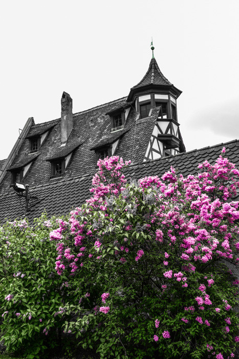 Nürnberg/Nähe Burg