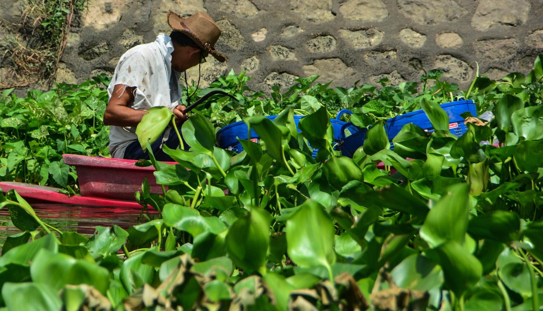 Fischer in Zentralthailand