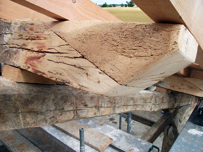 Refaçonnage saillies avant-toit pour éviter remplacement poutre, vue face arrière - APRES