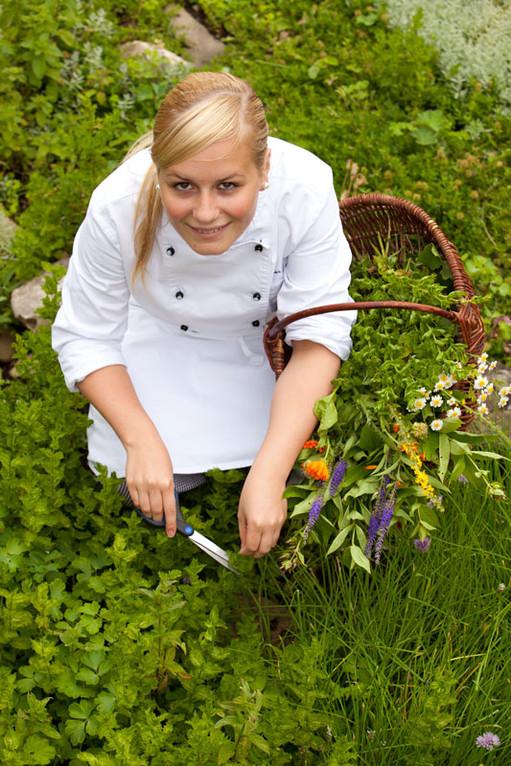Ernte im Kräutergarten