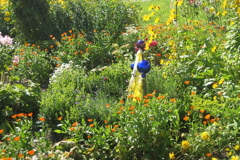 Kräutergarten von Anke Lässer