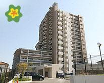不動産仲介・一戸建て・マンション・土地探しならお任せ下さい。新築・中古物件等を多数取り扱っています。地元、西宮を中心に東は大阪・京都・滋賀、西は加古川・姫路まで近畿一円で幅広く活動しています。