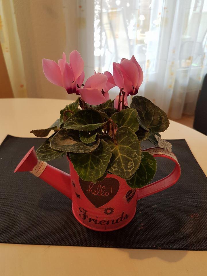 Giesskanne -ohne Blume- , 20.-