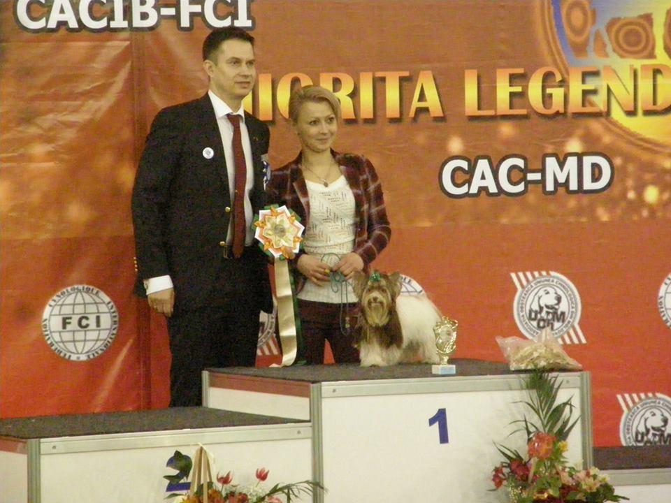 DEL TERRO PERROS AMARO MONTENEGRO. Вл. Чебан Елена (Молдова).
