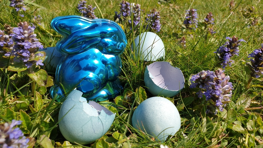 Osterhase, Ostern, flowfly.photo, Beatrice Sackmann