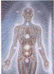 Das Chakra-und Energiesystem des Menschen