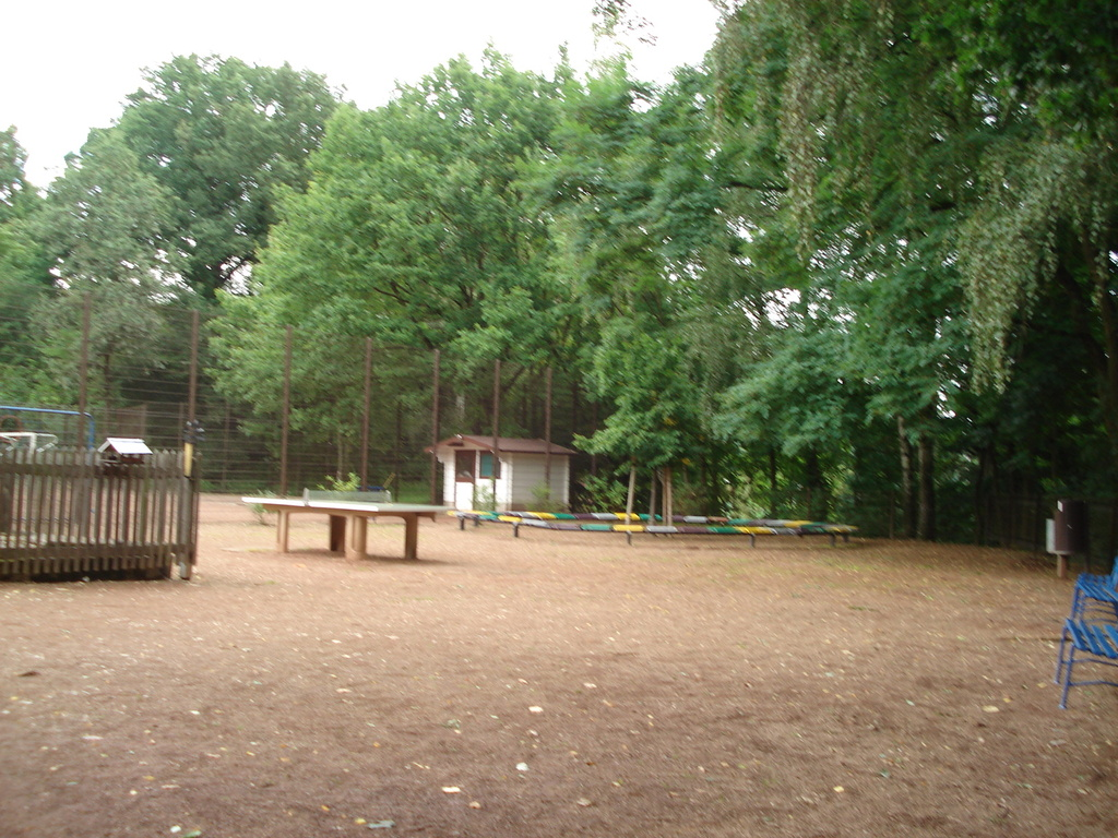 Sportplatz mit Pausenhof