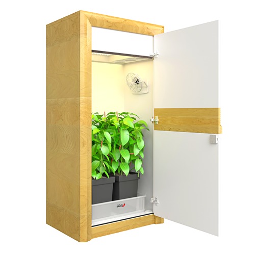 LED Growschrank von urban Chili
