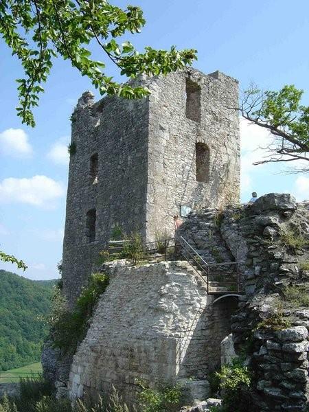 Wohnturm und Reste der Torhausbasis von Südwesten