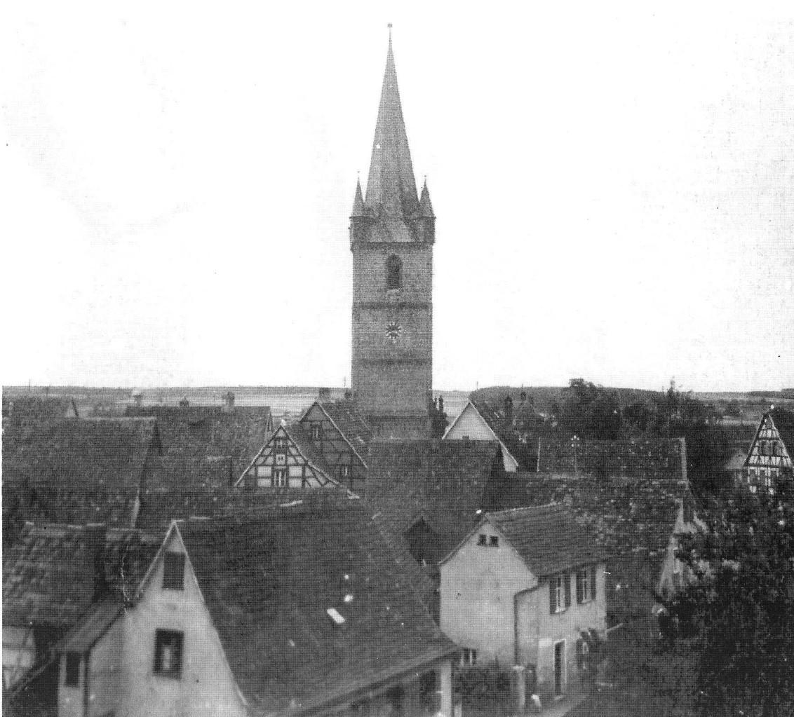 Blick von der Schule auf die Sandbergstraße und nach Westen