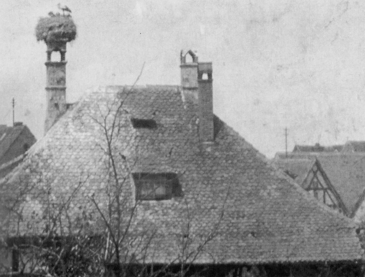 Der große Kamin war bei Storchens immer ein beliebter Nestplatz.