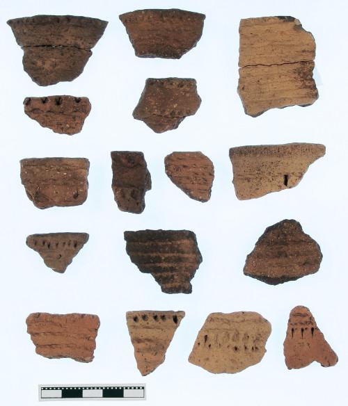 Gefäßscherben der schnurkeramischen Epoche. Insgesamt erbrachten die Grabungen im Jahr 2009 mehrere tausend Scherben.