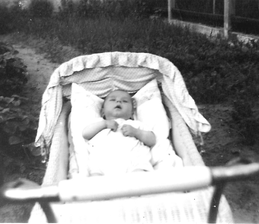 Klaus, 11 Wochen alt