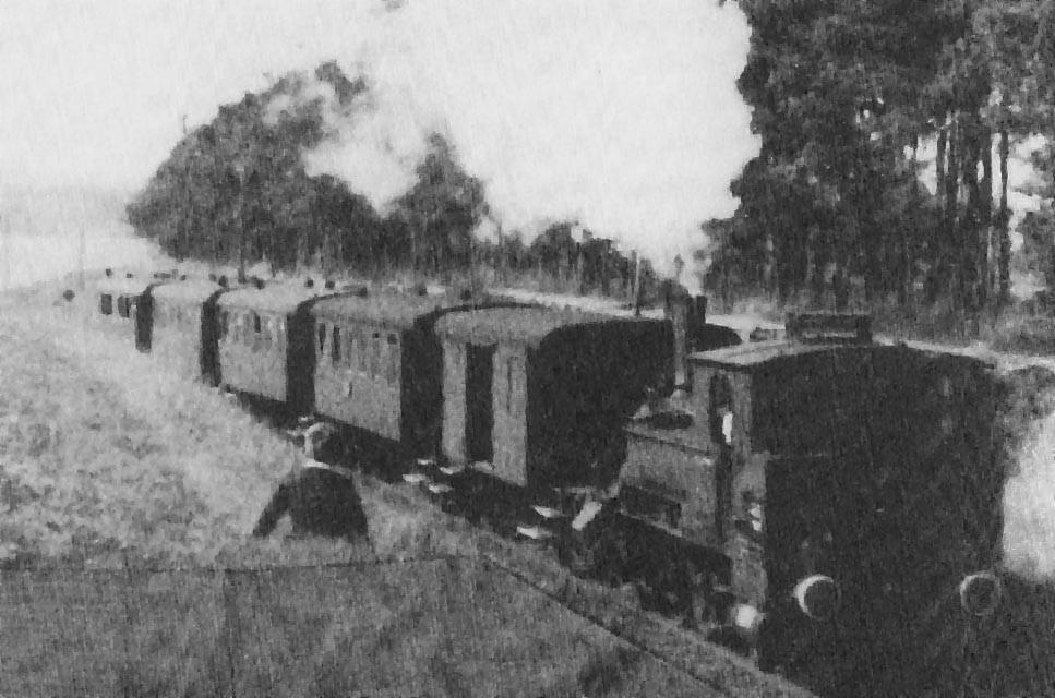 """Die """"Fuchtel"""" mit ihrem Zuganhang auf der leichten Steigungsstrecke am Ortsrand von Bruck."""