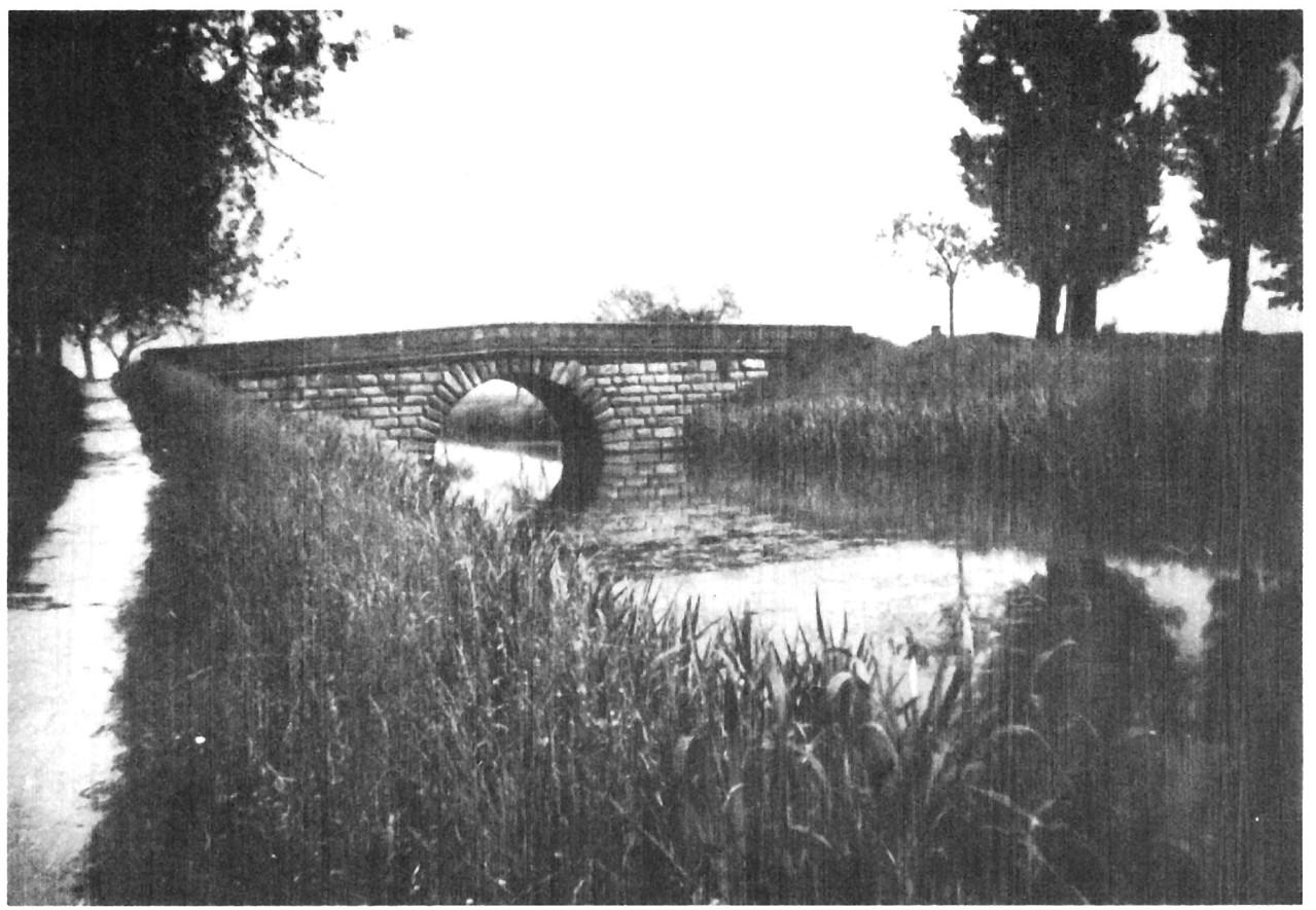 Die schöne alte Brücke über den Ludwig-Donau-Main-Kanal (noch mit Wasser)