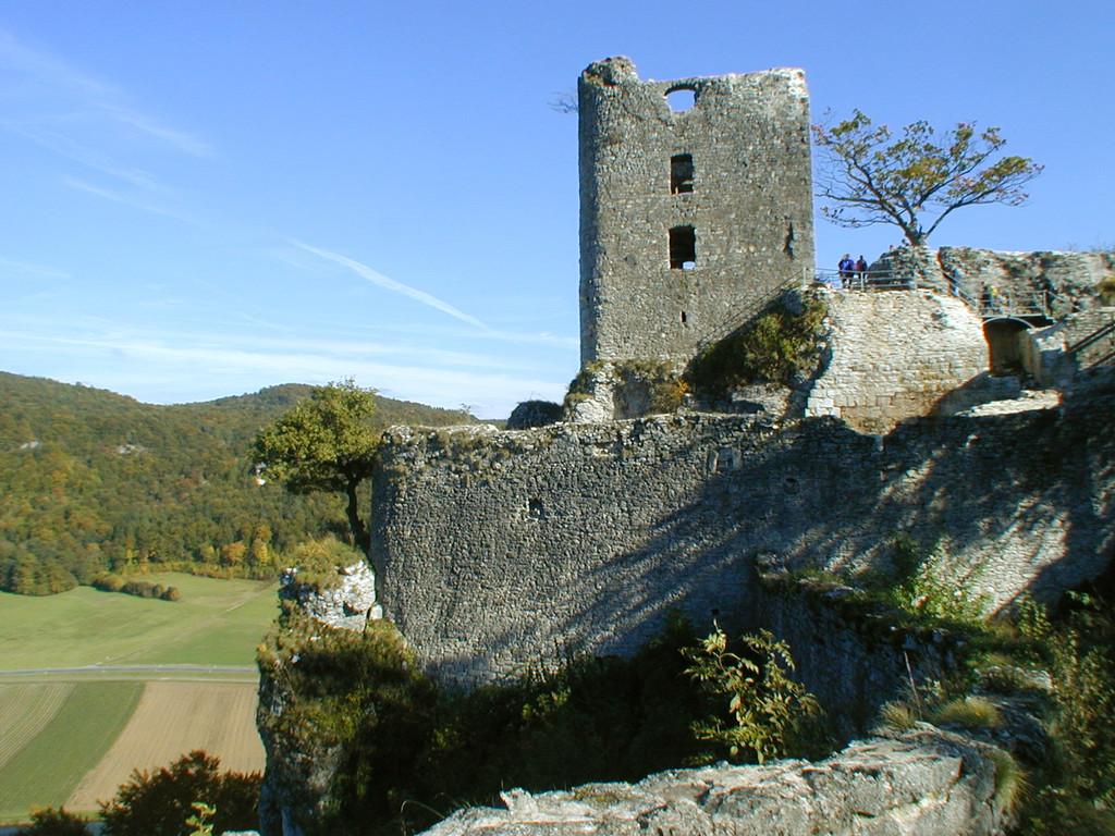 """Wohnturm und Restmauerwerk des """"Neuen Hauses"""" von Westen"""