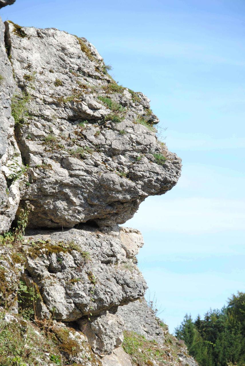 Ein Felsen zeigt Gesicht