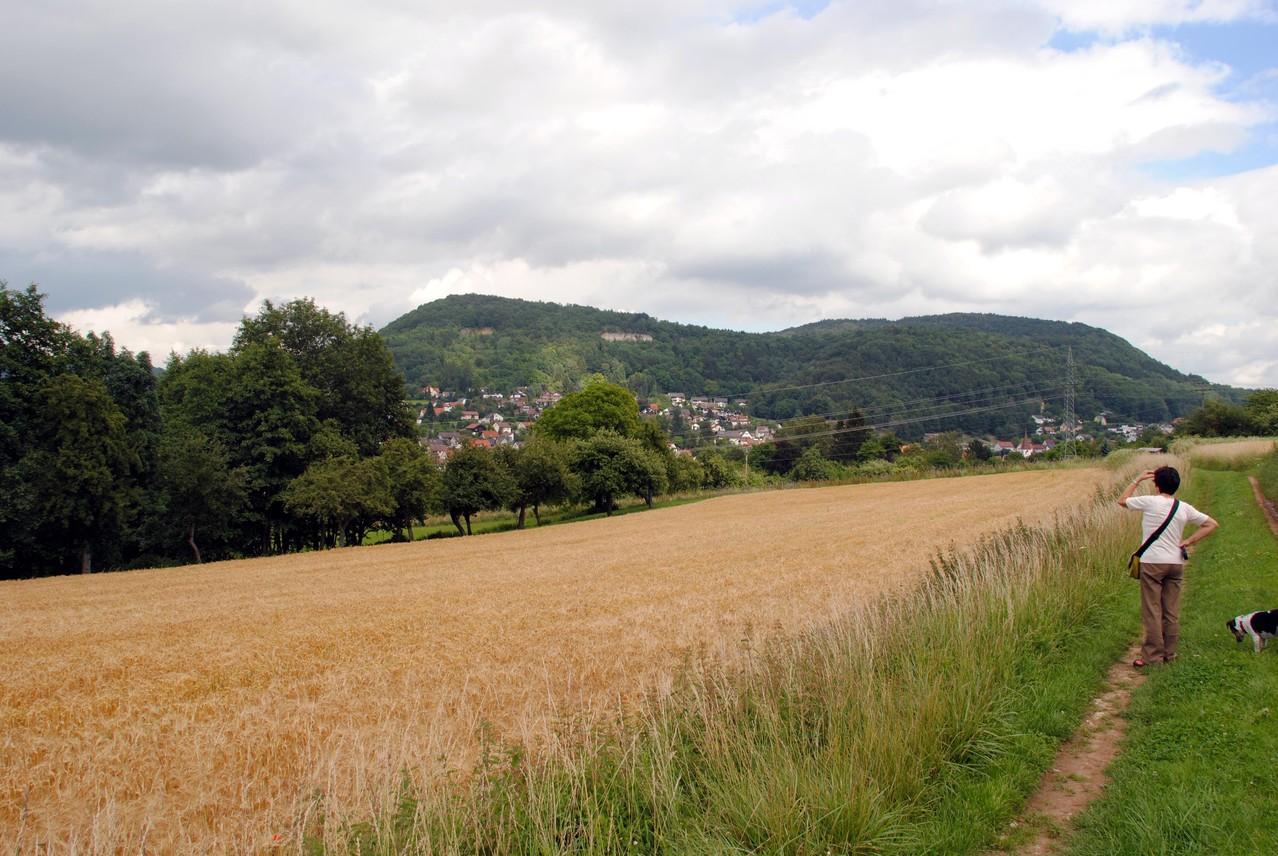 Blick zum Houbirg-Bergstock von oberhalb des BDM am Hang des Bauernbergs/Deckersbergs