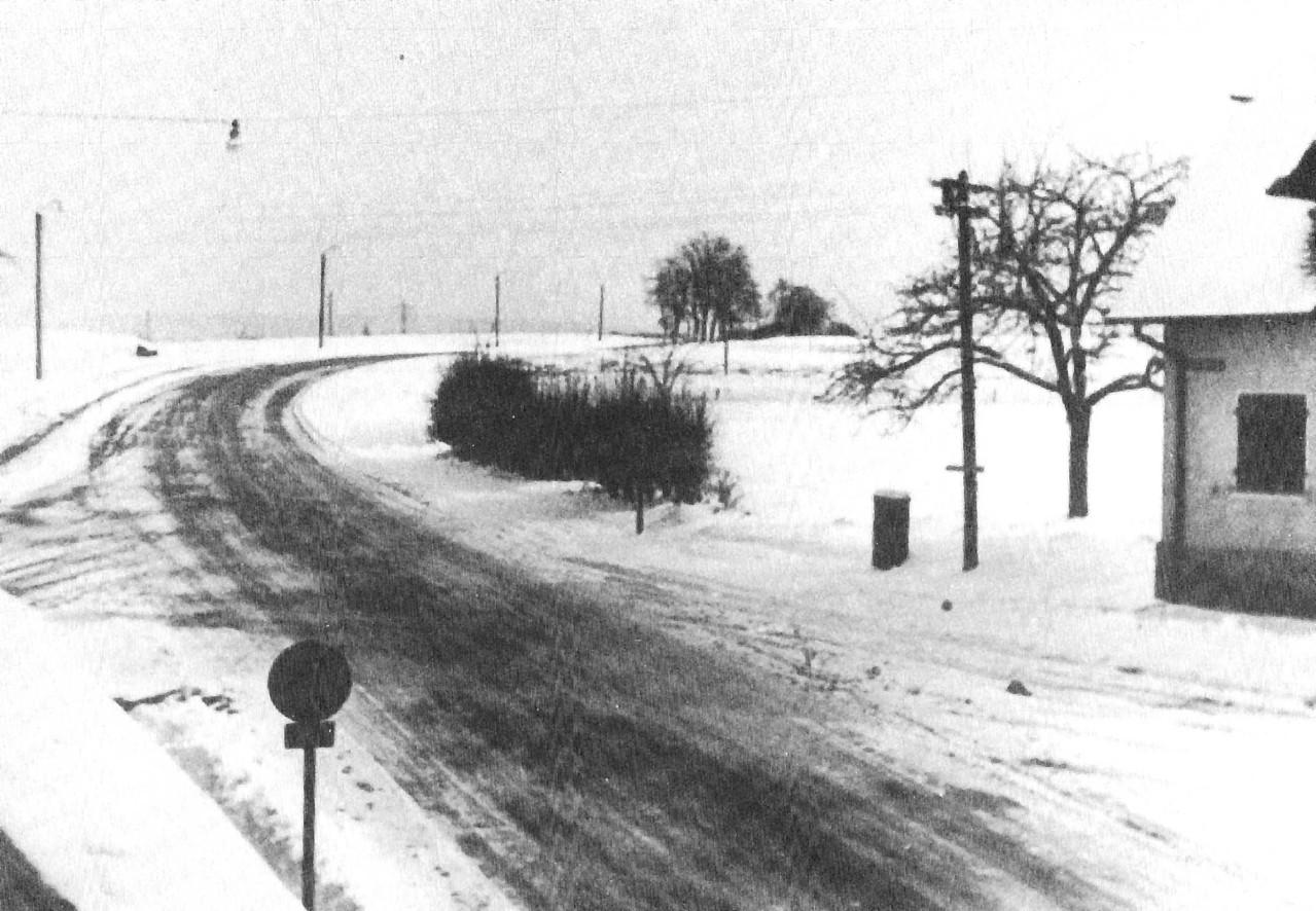 Brucker Ortsrand im Norden in den 1950er Jahren. Auf der Anhöhe links außerhalb des Bildausschnitts stand unser Kletter-Strommast.