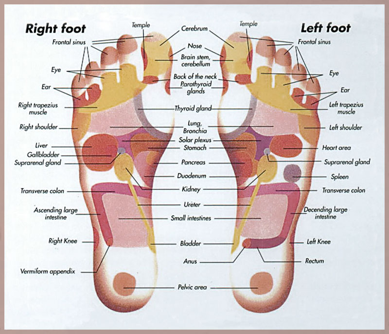 Reflexology Rejuvenate In Schoharie