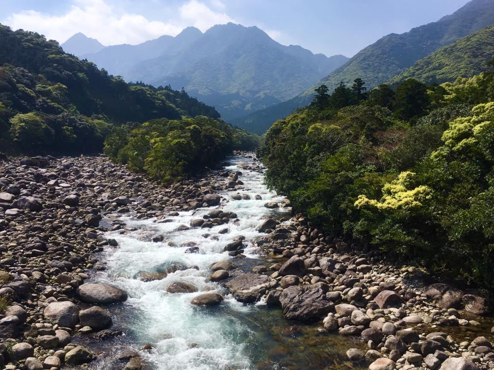 ユースホステルの近くを流れる宮之浦川。上流までお散歩すればこんな景色が見られる。