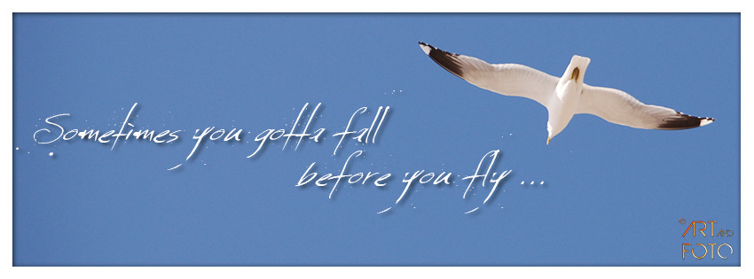 Sometimes you gotta fall before you fly ...  (unbekannt)