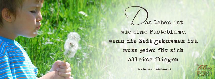 Das Leben ist wie eine Pusteblume, wenn die Zeit gekommen ist, muss jeder für sich alleine fliegen.  [Verfasser unbekannt] Bildquelle fotolia.com © Marzanna Syncerz