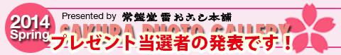2014年桜フォトギャラリー 当選者発表〈5月23日〉