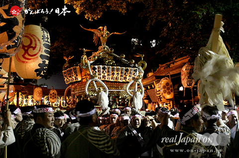 鳥越祭〈本社神輿宮入〉@2014.06.08
