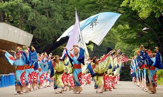 Aikido Demonstration, Aikido Renshinkai