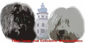 Tibet-Terrier vom Geilsdorfer Wasserschloss