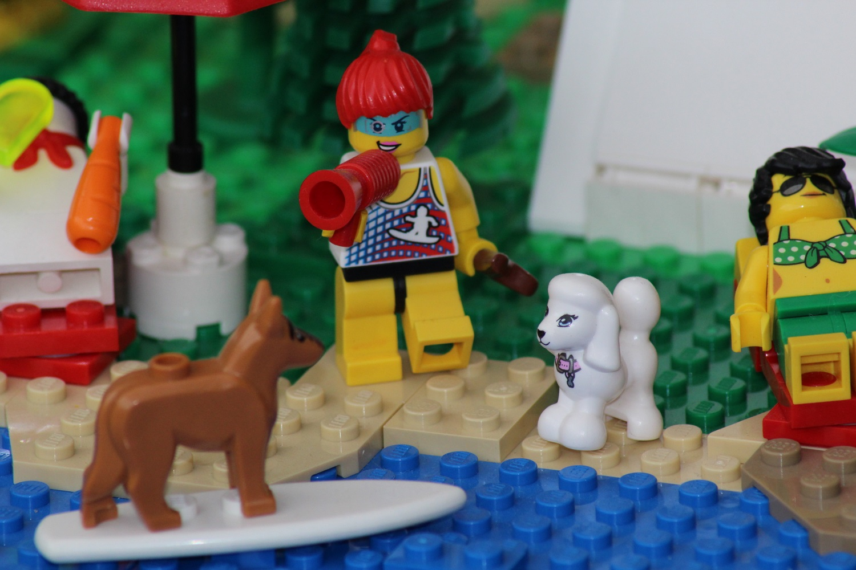 Hundetrainerin mit Skimboarding-Dog