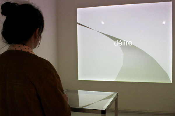 Fludd - babel - HB3D, galerie 14 / Glassbox, Paris, 2010