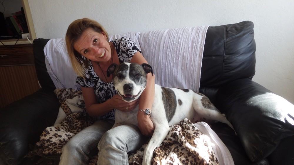 Emma, der Schmusepittbull 😉 @ El Hierro