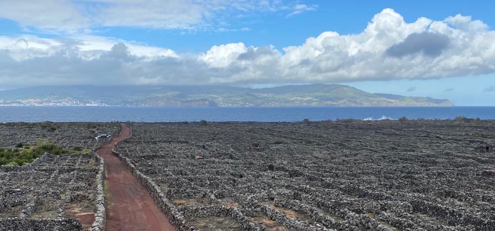 Azoren (Bild: Pico mit Blick auf Faial). Auszeit-Begleitung 🇵🇹 Brigitte Elisabeth Kecht . Atlantis Praxis