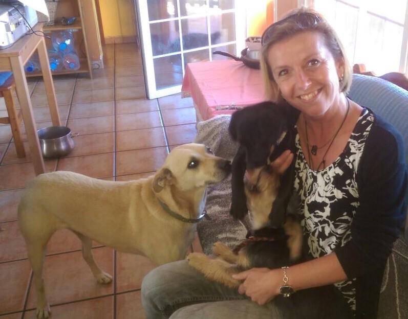 @ El Hierro: Man könnte meinen, ich bin seit eh und je mit Hunden unterwegs...