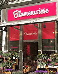 Blumenwiese Hamburg