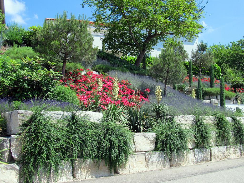 Pflanzung pflege wohnen garten for Garten pflege