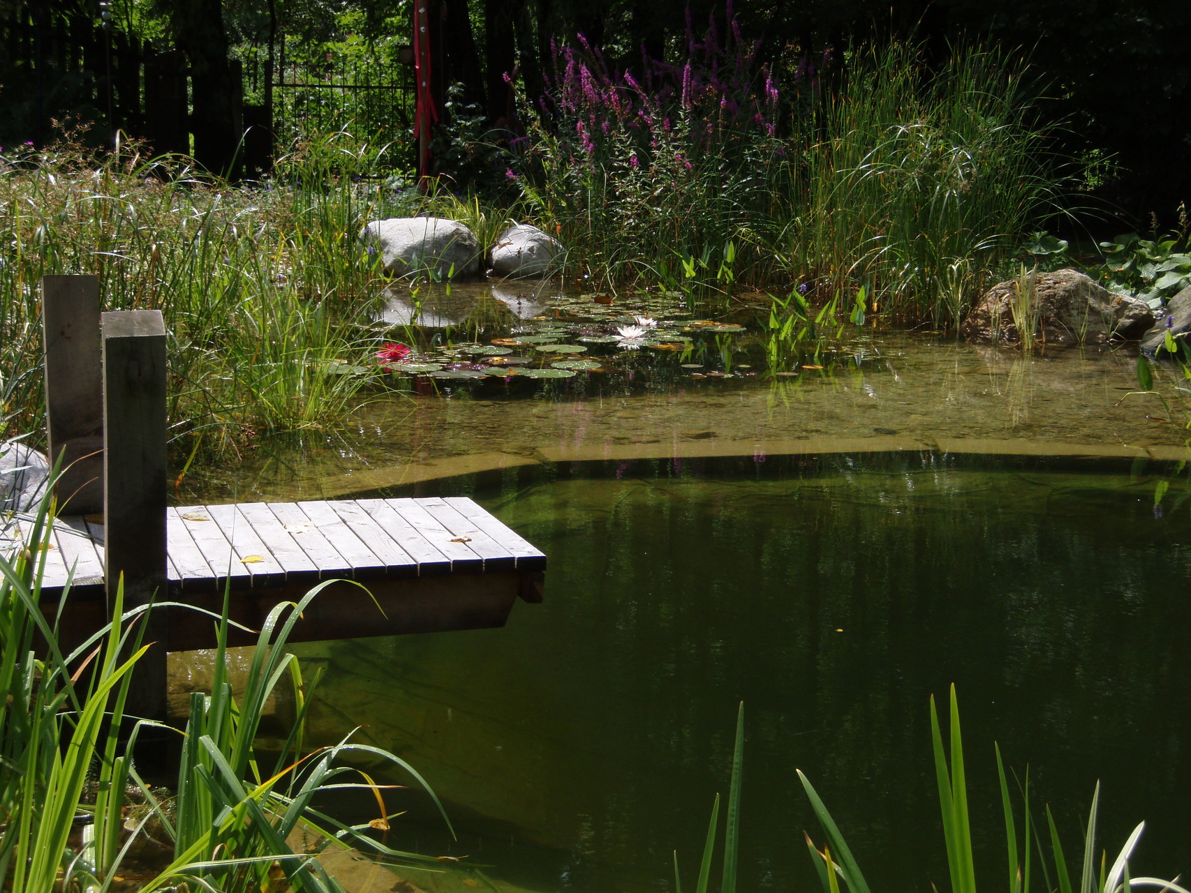 Von dobsch tz gmbh gartengestaltung - Gartengestaltung app ...