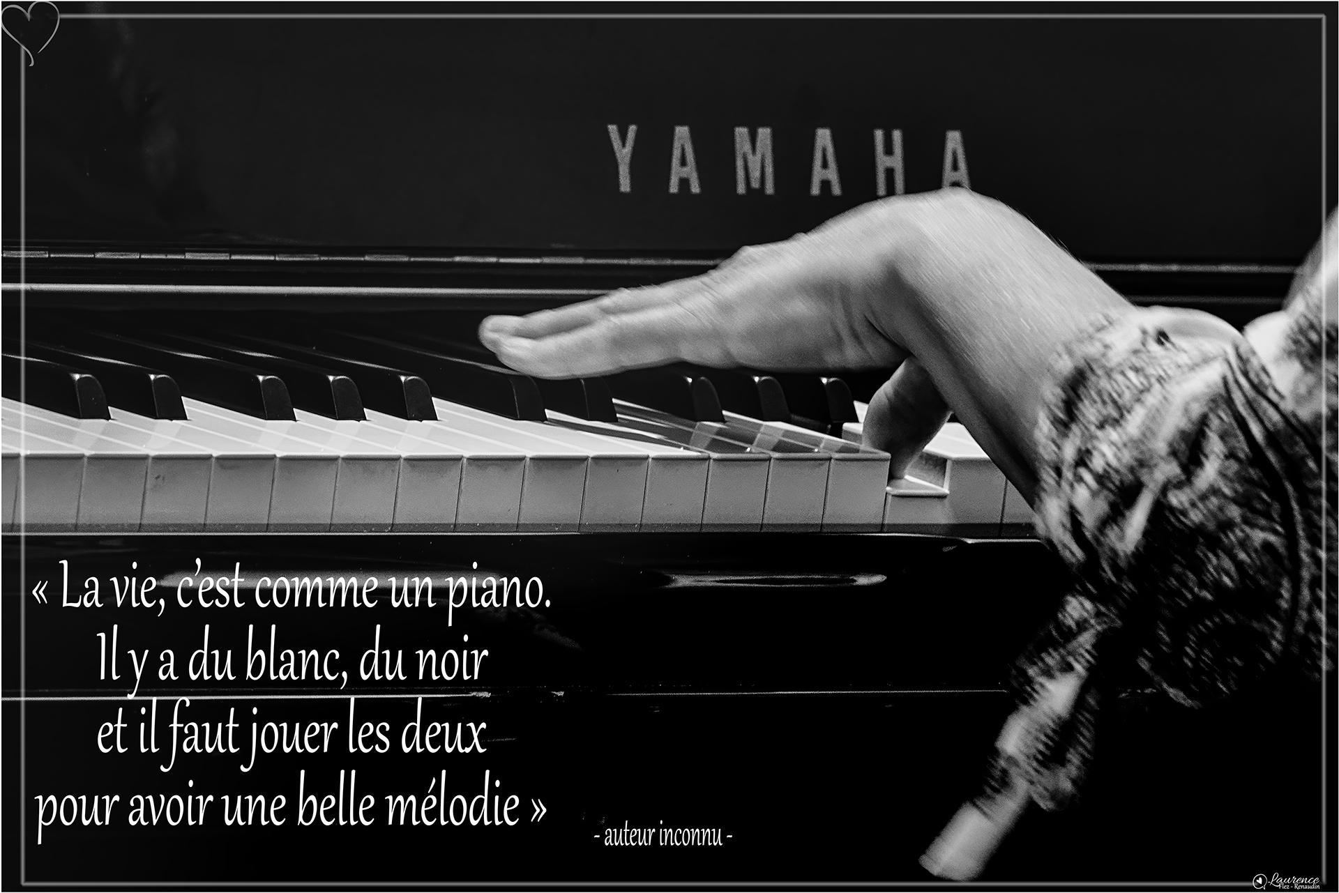 La vie est une mélodie