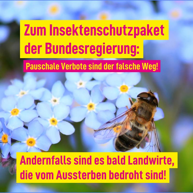 Heute behandelt der Bundestag das Insektenschutzpaket der Bundesregierung‼